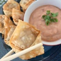 Kid Friendly American Wontons With Sloppy Joe Dipping Sauce Recipe