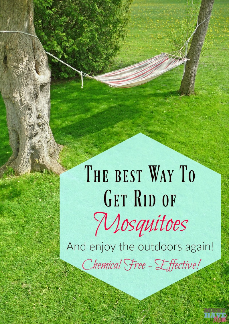 The best way to get rid of mosquitoes and enjoy the outdoors again! Use in your backyard, while camping, etc! Chemical free and it actually works!