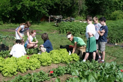 Seeds of Change community garden and school garden grant program. Get your garden funded and have your own community garden!