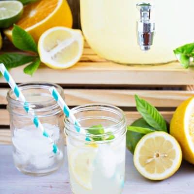 Wombat's Slow Brew Lemonade Recipe + Giveaway!