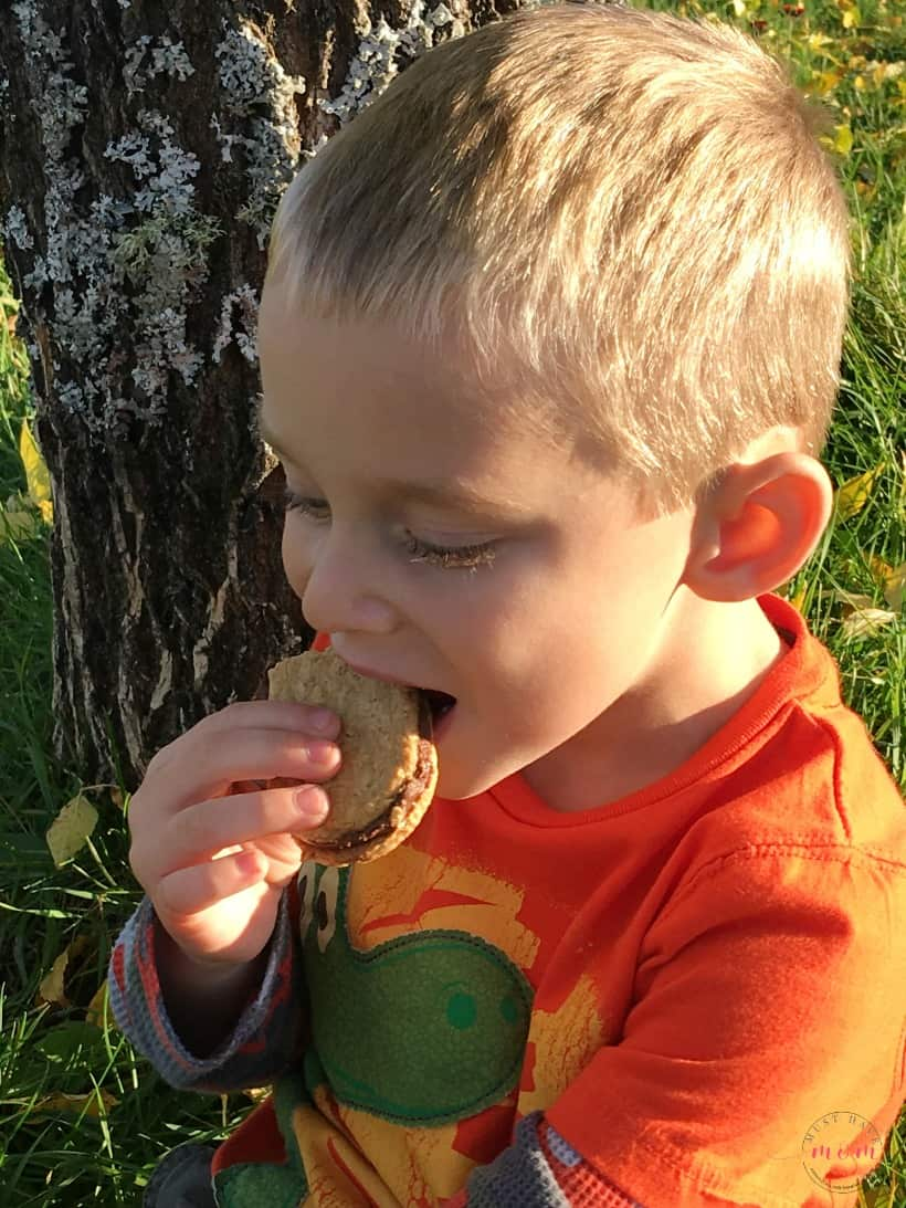 Fall walk with toddlers and stop for a snack. Collect twigs for a craft project afterwards!