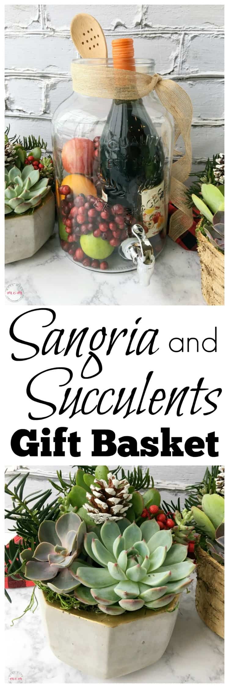 DIY Sangria Succulents Gift Basket Ideas Must Have Mom