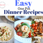 Easy One Pot Dinner Recipes