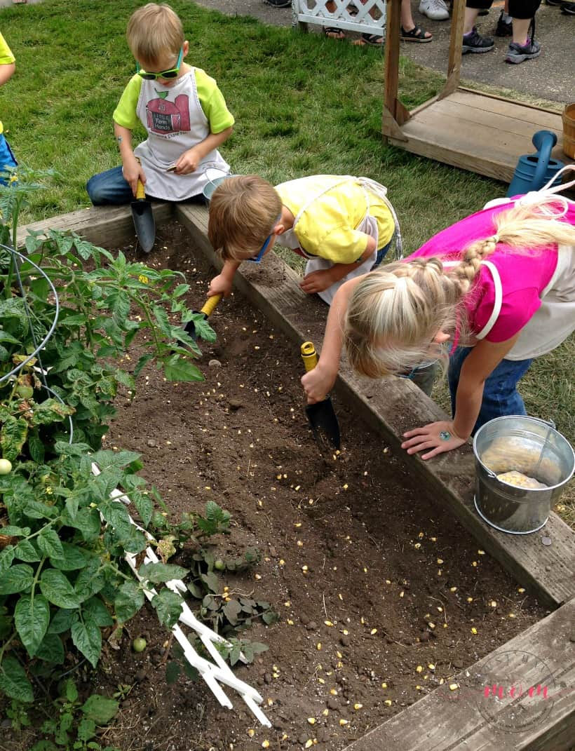 5 surprising benefits to grow a family garden and why it was a game changer for us!