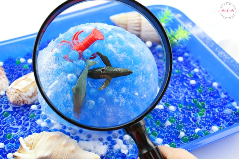 magnifying glass to see sea creatures