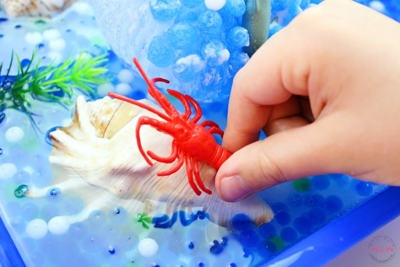 sea creatures inside frozen sensory bin