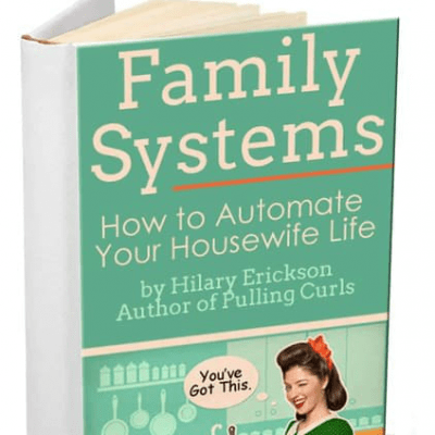 Family Systems Book