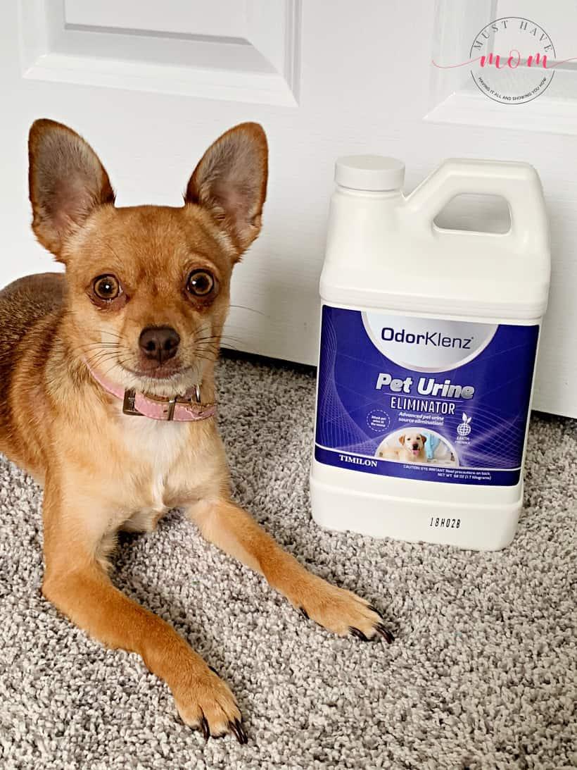 pet urine remover