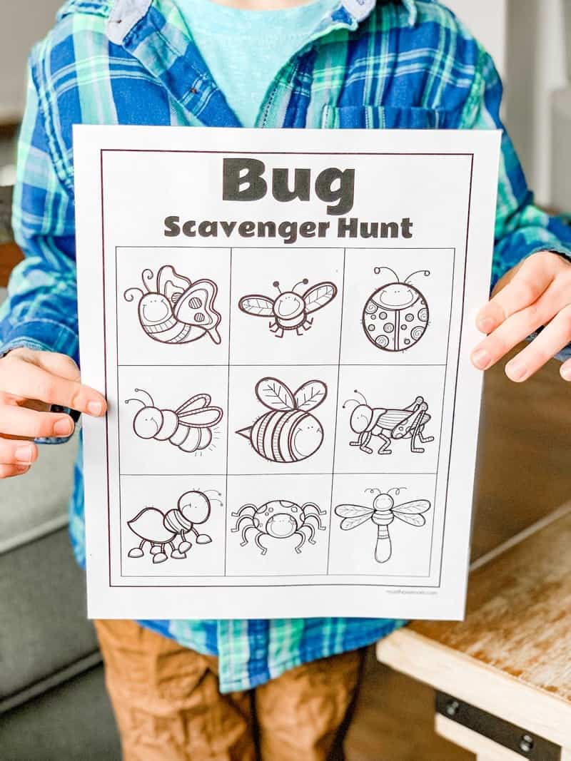 bug scavenger hunt printable