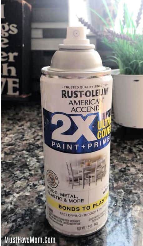 paint for dollar tree planter
