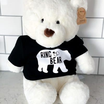 DIY Ring Bear Proposal