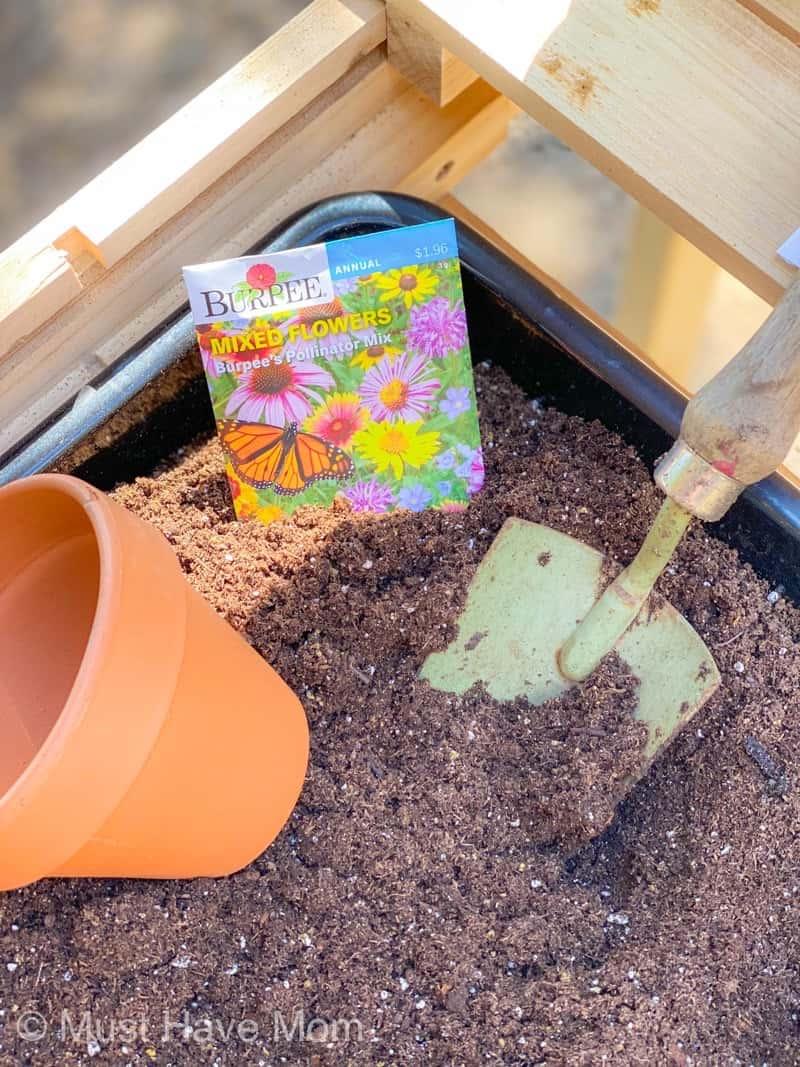 pollinator garden how to