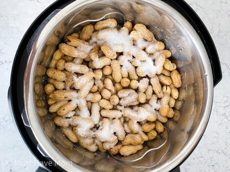 boiled peanuts in instant pot with salt